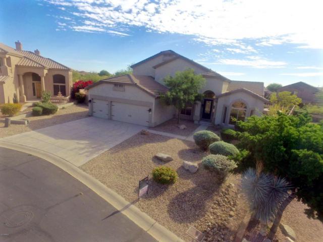 7925 E Sierra Morena Circle, Mesa, AZ 85207 (MLS #5688491) :: The Kenny Klaus Team
