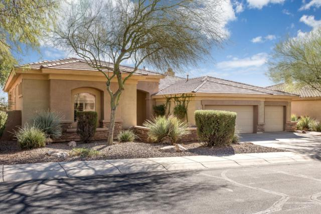 2249 W Hazelhurst Drive, Anthem, AZ 85086 (MLS #5688510) :: Cambridge Properties