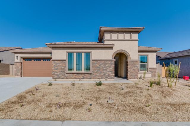 18378 W Goldenrod Street, Goodyear, AZ 85338 (MLS #5688652) :: Occasio Realty