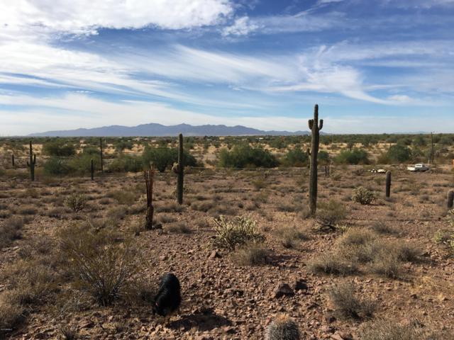 151 XX W Pinnacle Vista Drive, Surprise, AZ 85387 (MLS #5688954) :: Yost Realty Group at RE/MAX Casa Grande