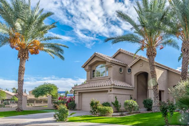 177 W Colt Road, Tempe, AZ 85284 (MLS #5689033) :: The Daniel Montez Real Estate Group