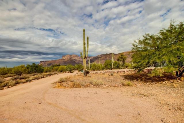 10196 E Open Sky Drive, Gold Canyon, AZ 85118 (MLS #5689250) :: The Pete Dijkstra Team