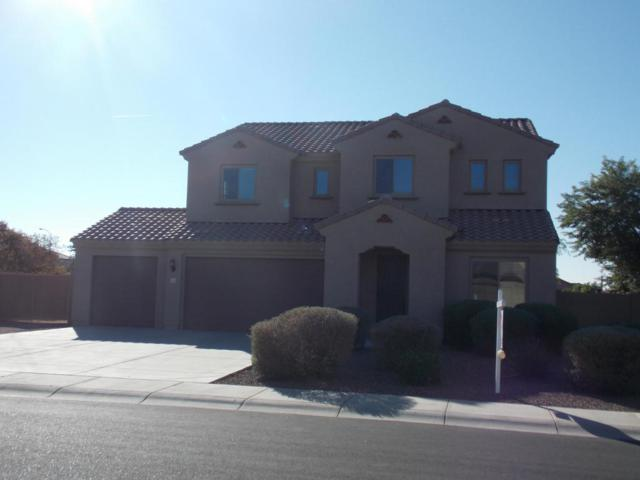 11053 E Quintana Avenue, Mesa, AZ 85212 (MLS #5689939) :: The Everest Team at My Home Group