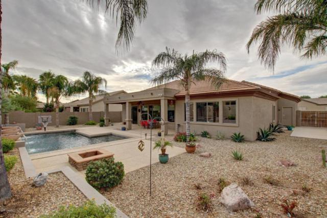 6563 S Teresa Drive, Chandler, AZ 85249 (MLS #5689955) :: The Pete Dijkstra Team