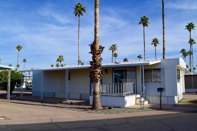 4065 E University Drive #79, Mesa, AZ 85205 (MLS #5690292) :: Yost Realty Group at RE/MAX Casa Grande