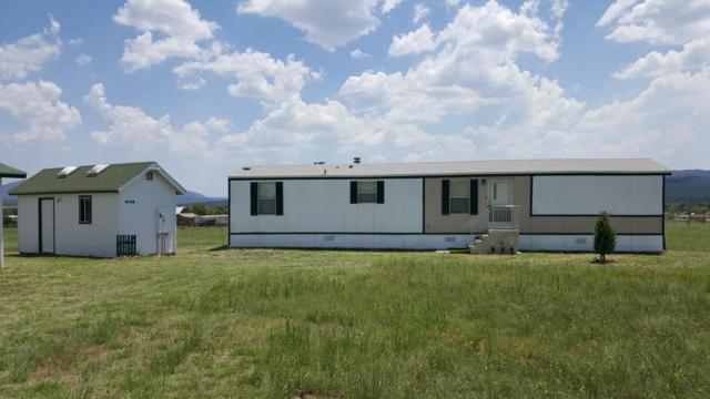 203 S Vendetta Drive, Young, AZ 85554 (MLS #5690351) :: The Daniel Montez Real Estate Group