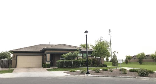 7331 E Posada Avenue, Mesa, AZ 85212 (MLS #5690715) :: Occasio Realty