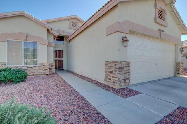 11045 W Oraibi Drive, Sun City, AZ 85373 (MLS #5691394) :: Desert Home Premier