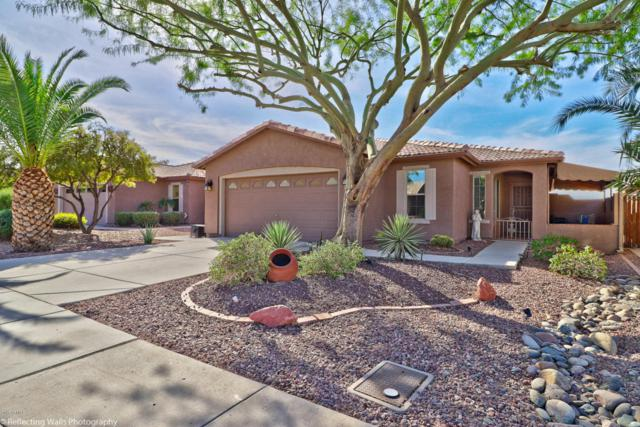 19870 N 108TH Avenue, Sun City, AZ 85373 (MLS #5691835) :: Desert Home Premier