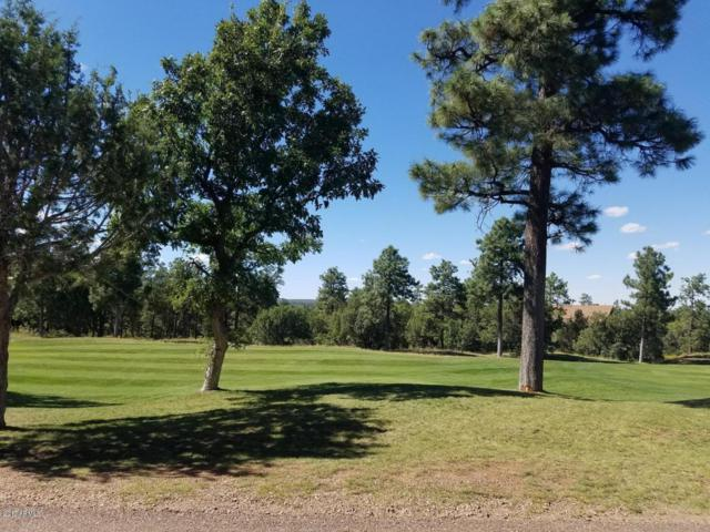 850 S Barberry Lane, Show Low, AZ 85901 (MLS #5692807) :: The Everest Team at My Home Group