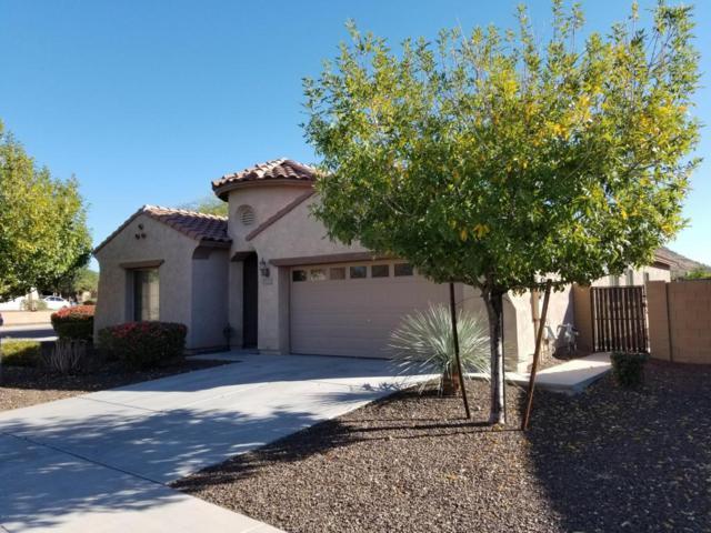 5207 W Bajada Road, Phoenix, AZ 85083 (MLS #5694348) :: The Laughton Team