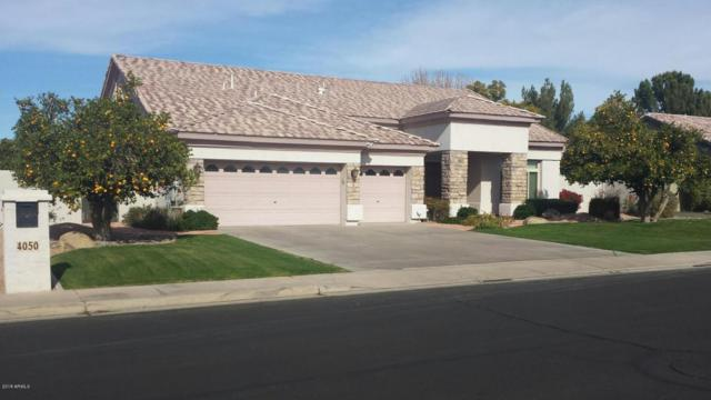 4050 E Encanto Street, Mesa, AZ 85205 (MLS #5695405) :: Yost Realty Group at RE/MAX Casa Grande