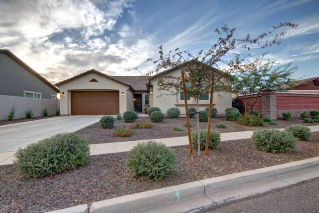 12306 N 152ND Drive, Surprise, AZ 85379 (MLS #5695950) :: The Everest Team at My Home Group