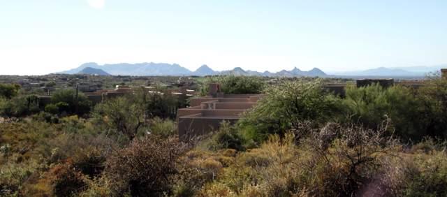 41731 N 111th Place, Scottsdale, AZ 85262 (MLS #5696221) :: The Ellens Team