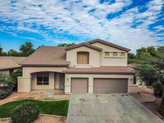 14566 W Mulberry Drive, Goodyear, AZ 85395 (MLS #5696521) :: Kortright Group - West USA Realty