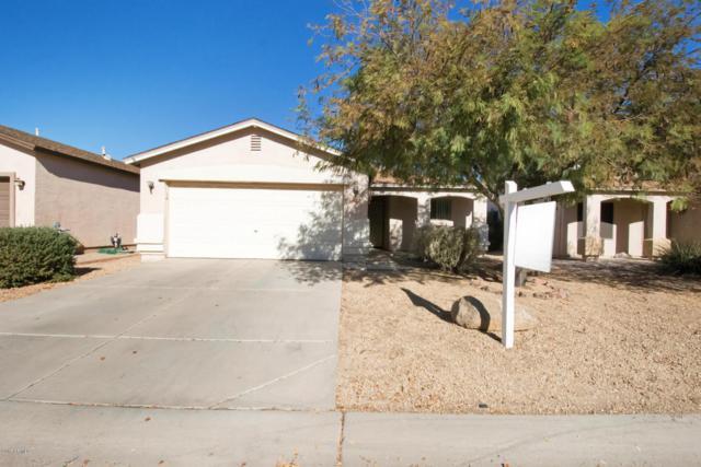 990 E Dust Devil Drive, San Tan Valley, AZ 85143 (MLS #5696852) :: Yost Realty Group at RE/MAX Casa Grande