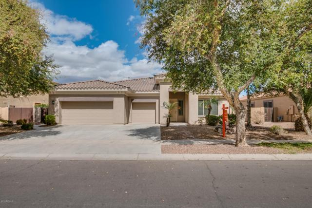 4282 E Carriage Way, Gilbert, AZ 85297 (MLS #5696916) :: Santizo Realty Group