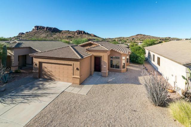 4300 S Pony Rider Trail, Gold Canyon, AZ 85118 (MLS #5696986) :: The Pete Dijkstra Team