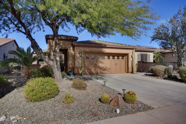 12416 W Pinnacle Vista Drive, Peoria, AZ 85383 (MLS #5697249) :: Desert Home Premier