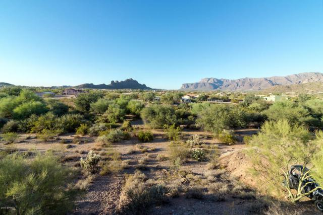10862 E Breathless Avenue, Gold Canyon, AZ 85118 (MLS #5697504) :: Kortright Group - West USA Realty