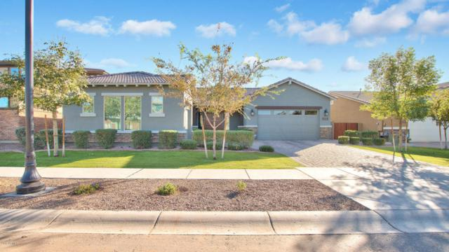 7423 E Pampa Avenue, Mesa, AZ 85212 (MLS #5697875) :: The Bill and Cindy Flowers Team