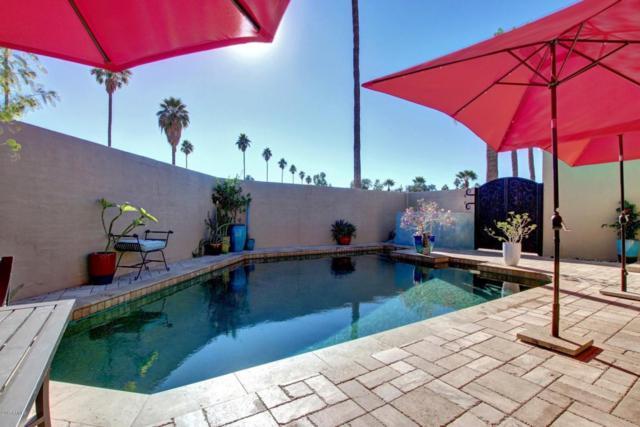 2086 E Balboa Drive, Tempe, AZ 85282 (MLS #5698066) :: Group 46:10