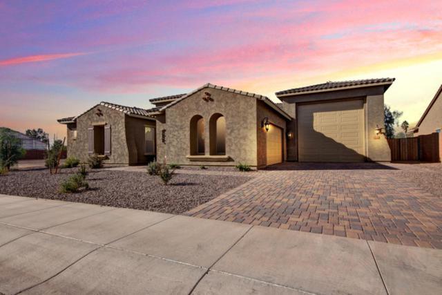 4618 N 186TH Lane, Goodyear, AZ 85395 (MLS #5699518) :: Occasio Realty