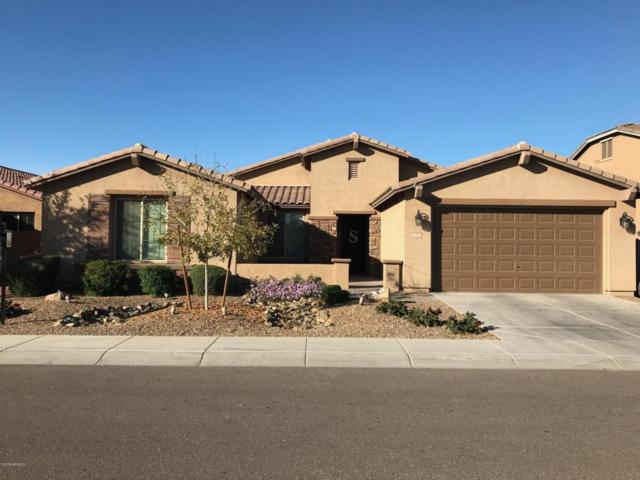 1204 W Fever Tree Avenue, Queen Creek, AZ 85140 (MLS #5699703) :: Occasio Realty