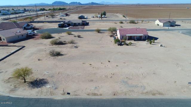15980 S Caborca Circle, Arizona City, AZ 85123 (MLS #5700152) :: Kortright Group - West USA Realty