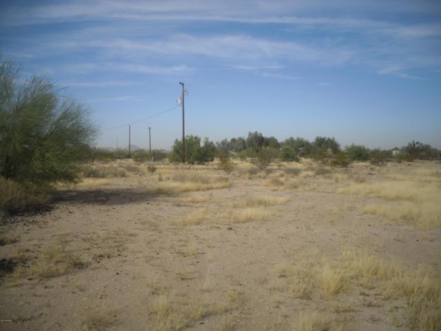 50043 W Whitethorn Road, Maricopa, AZ 85139 (MLS #5702142) :: The Garcia Group