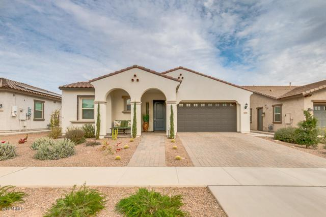 4899 N 207TH Lane, Buckeye, AZ 85396 (MLS #5702952) :: Desert Home Premier