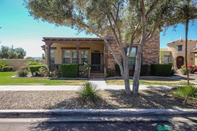 12612 N 152nd Avenue, Surprise, AZ 85379 (MLS #5704148) :: Occasio Realty