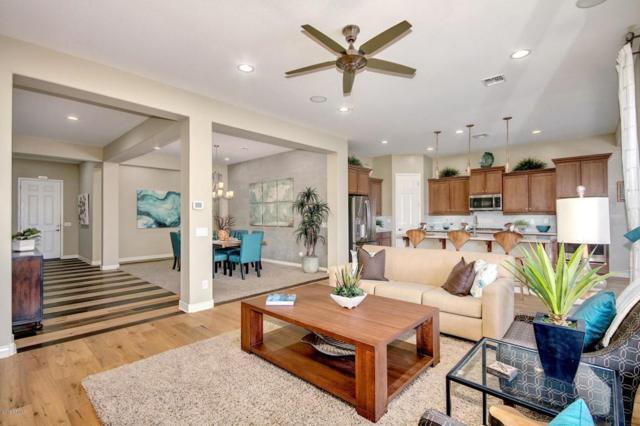 20240 E Escalante Road, Queen Creek, AZ 85142 (MLS #5705007) :: Essential Properties, Inc.