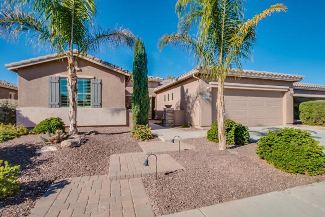 19764 N Swan Court, Maricopa, AZ 85138 (MLS #5705174) :: Yost Realty Group at RE/MAX Casa Grande