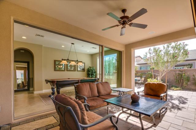 1567 E Elysian Pass, San Tan Valley, AZ 85140 (MLS #5705481) :: Yost Realty Group at RE/MAX Casa Grande
