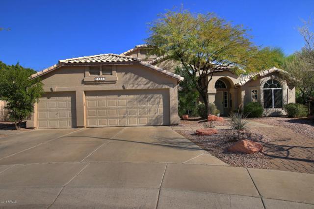 14651 S 23RD Place, Phoenix, AZ 85048 (MLS #5705890) :: Private Client Team
