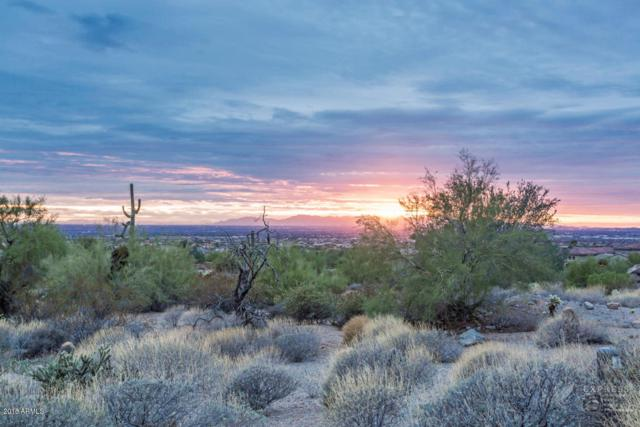 3517 N Shadow Trail Trail, Mesa, AZ 85207 (MLS #5706055) :: Yost Realty Group at RE/MAX Casa Grande