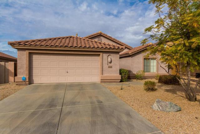4518 E Thorn Tree Drive, Cave Creek, AZ 85331 (MLS #5706757) :: The Laughton Team