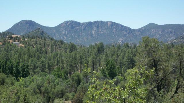 509 N Chaparral Pines Drive, Payson, AZ 85541 (MLS #5707403) :: Lifestyle Partners Team