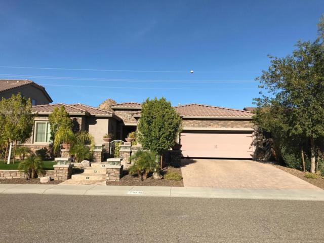 5736 W Plum Road, Phoenix, AZ 85083 (MLS #5707862) :: The Laughton Team