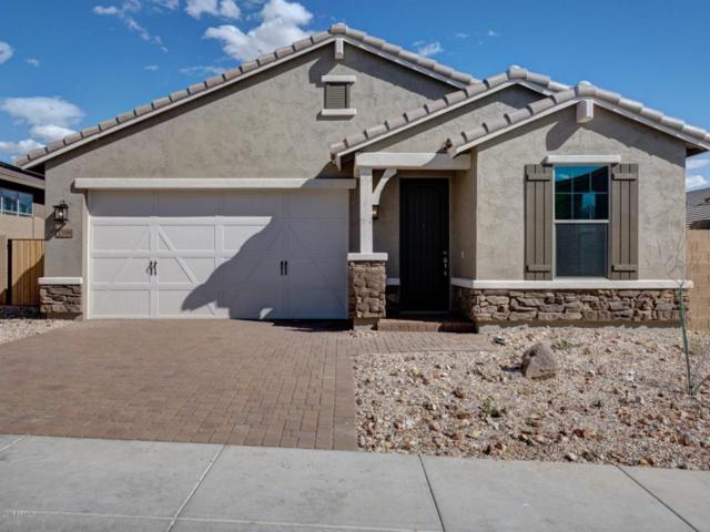 33911 N 29TH Drive, Phoenix, AZ 85085 (MLS #5708283) :: Occasio Realty