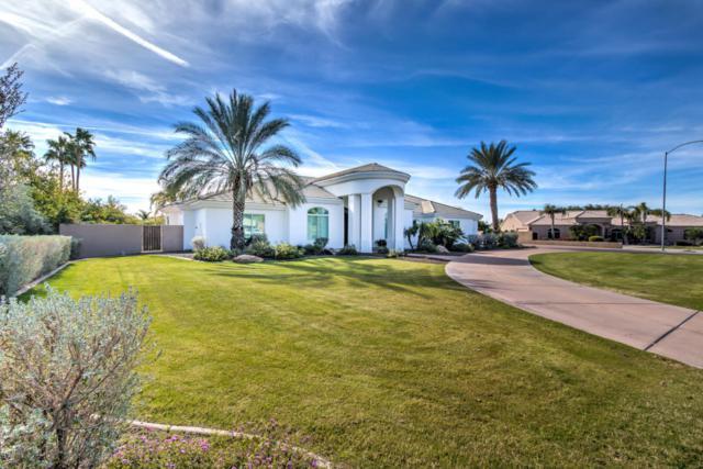 3763 E Oasis Circle, Mesa, AZ 85215 (MLS #5708525) :: Occasio Realty
