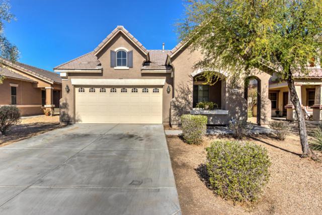 11610 W Rio Vista Lane, Avondale, AZ 85323 (MLS #5709737) :: Brent & Brenda Team