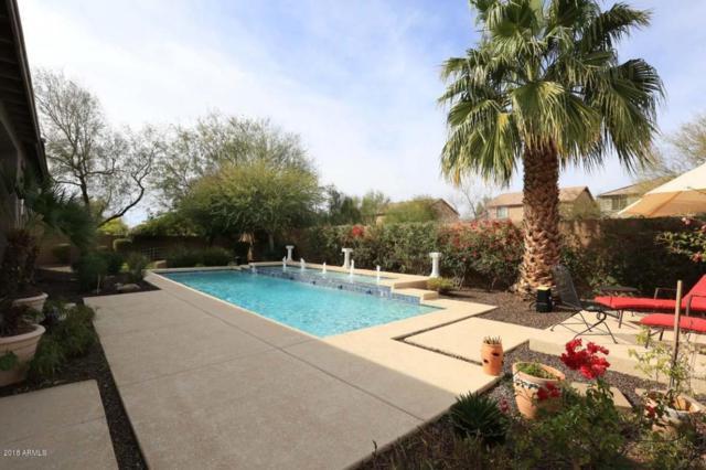 4934 W Lariat Lane, Phoenix, AZ 85083 (MLS #5710018) :: The Laughton Team