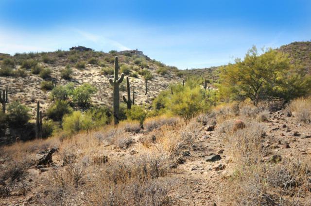 11664 N Sunset Vista Drive, Fountain Hills, AZ 85268 (MLS #5711237) :: The Kenny Klaus Team