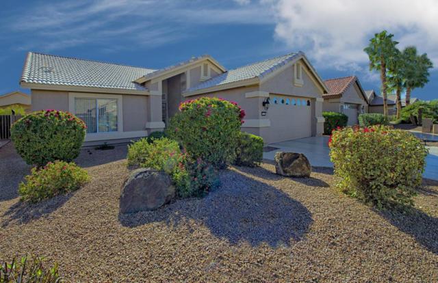 15373 W Merrell Street, Goodyear, AZ 85395 (MLS #5711434) :: Santizo Realty Group