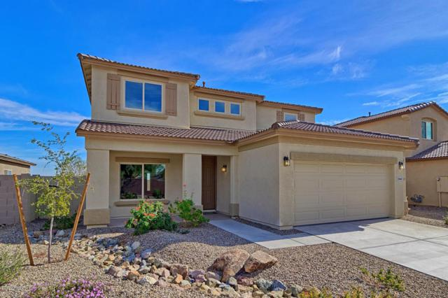 26443 N 164TH Drive, Surprise, AZ 85387 (MLS #5711560) :: Kortright Group - West USA Realty