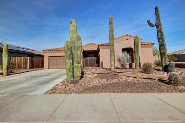 18590 W Mcneil Street, Goodyear, AZ 85338 (MLS #5711581) :: Occasio Realty