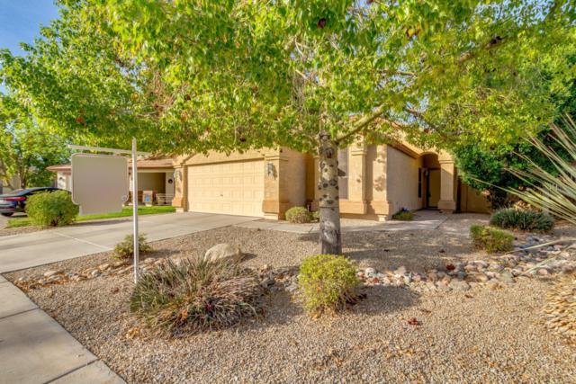 12814 W Monte Vista Road W, Avondale, AZ 85392 (MLS #5711612) :: The Daniel Montez Real Estate Group