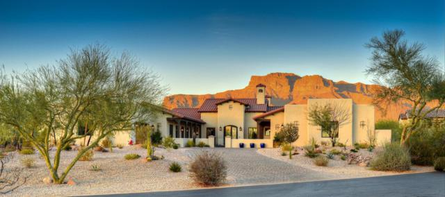 6860 E Gray Fox Court, Gold Canyon, AZ 85118 (MLS #5711862) :: The Pete Dijkstra Team